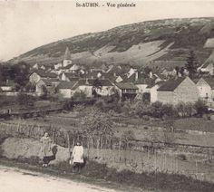 Site qui raconte l'histoire du village de Saint Aubin de la région jusqu'à ces vignes