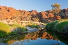 The Bungle Bungles are one of Australia's natural wonders and can be accessed as part of an Orion Expedition Cruise.
