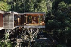 Check out this awesome listing on Airbnb: The Brake House - Houses for Rent in Titirangi