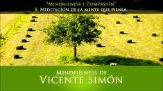 CD1 08 Meditación de la mente que piensa