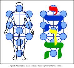 Music of the Ancients: The Tree of Life Spiritual Symbols, Spiritual Path, Tarot, Fractal Geometry, Sacred Geometry, Warrior Of The Light, Compass Navigation, Spirit Science, Egyptian Symbols