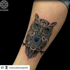 Owl with a blue heart