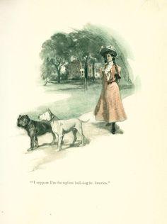 Dog Book 1903 Fighting Bull Terrier Story