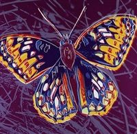Andy Warhol Butterfly, 1983 Guy Hepner Price on Request