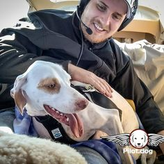 From the flight video at http://ift.tt/1Jru2X8 #aviation #instaaviation #instagramaviation #dogrescue #pilotdog #instagrampilot #instapilot #instadog #foreverhome #rescuedog #dogs #dogsofinstagram #rescuepetsofinstagram