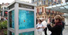 Οι τηλεφωνικοί θάλαμοι γίνονται ενυδρεία