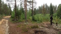 New information of the earliest settlement in Finland. Some 10 000 years ago people fished northern pike in Koitere area.