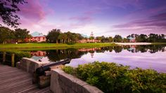 Compare hotels at Walt Disney World Resort near Orlando. See a side-by-side price comparison plus information about amenities, dining and more. Disney World Vacation Packages, Disney Vacation Club, Walt Disney World Vacations, Disney Trips, Disney Parks, Vacation Ideas, Disney Travel, Disney Bound, Family Vacations