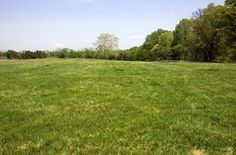 Land For Sale In Tazewell Va Lovely acreage in the majestic mountains of Virginia. This is your opportunity to build the perfect getaway for summer or winter. Hunting Land For Sale, Resin Sheds, The Perfect Getaway, Property For Rent, Best Location, Acre, Landing, Coastal, The Neighbourhood