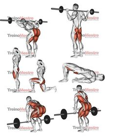 Upper-back weight exercises Gym Workout Chart, Gym Workout Videos, Butt Workout, Bodybuilding Training, Bodybuilding Workouts, Fitness Workouts, Weight Training Workouts, Fitness Studio Training, Muscle Building Workouts