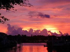 Coquina Key, St. Pete FL