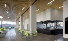 Gallery of Roche Canteen / EXH Design - 4