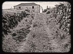 El Pasil en el Pueblo de Arona, donde se cultivaba variedad de alimentos, junto a sus muchos árboles frutales. Las cuadras proporcionaban el abono, que se regaba y zachaba en la tierra querida. Viéndose tal frondosidad, que todo el mundo lo percibía y apreciaba.