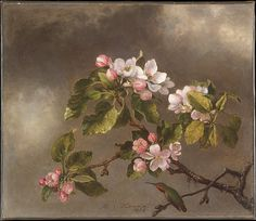 Martin Johnson Heade (1819–1904). Hummingbird and Apple Blossoms, 1875. The Metropolitan Museum of Art, New York. Gift of Mrs. J. Augustus Barnard, 1979 (1979.490.11) #spring