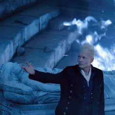 Harry Potter Fan Art, Harry Potter Universal, Harry Potter World, Gellert Grindelwald, Crimes Of Grindelwald, Johnny Depp Movies, Albus Dumbledore, Fantastic Beasts And Where, Voldemort