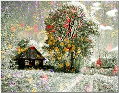 Blooming Summer. Impressionism by Nellie Vin