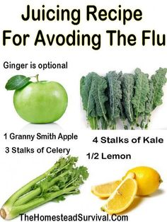 Juicing Recipe For Avoding the Flu » The Homestead Survival