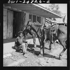 Colored boy holding a horse for a cattle buyer at the auction. John Vachon was a photographer for the Office of War Information (OWI) from before serving in the army until 1945 Man On Horse, Cowboy Art, History Photos, Vintage Photographs, Cattle, The Past, Hold On, Texas, Auction