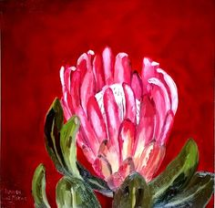 Title: Protea Compacta Table Mountain Cableway Medium: Oil paint on board Size: x Artists thoughts: This painting is digitally blown up in size and is used as a wall decoration in the stone building on Table Mountain, Cape Town Oil Painting Background, Oil Painting Abstract, Oil Painting Materials, Protea Art, Tea Bag Art, Mountain Paintings, Flower Art, Art Flowers, Mountains