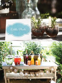Charming Greenhouse Bridal Shower Ideas  Just a real cute party!  Kinda like Lauren's wedding.  Understand finery.