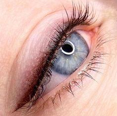Eyeliner Flick, Thin Eyeliner, Smokey Eyeliner, Eyeliner Tattoo, Makeup Tattoos, Eye Brows, Semi Permanent Eyeliner, Permanent Makeup Eyebrows, Eyebrow Makeup