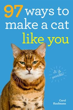 97 Ways to Make a Cat Like You on Scribd