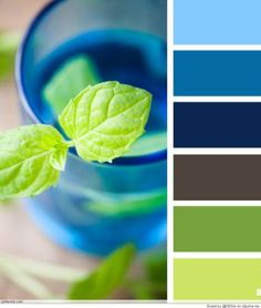 Color Palettes Ideas