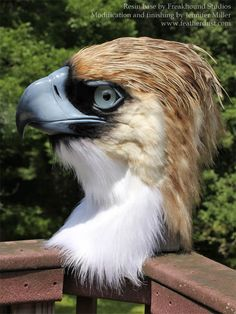 "nambroth: ""Philippine Eagle Mask Philippine Eagles are a long favorite of mine. When I first saw this blank from Freakhound Studios I knew I had to make this species of eagle with it! Months of work..."