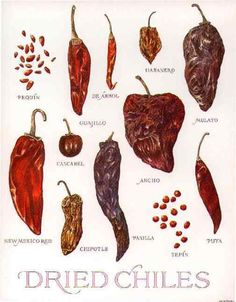 33706eb80ac4 Tipos de chile - dry chillies types of chillies Mexico Salsa Picante