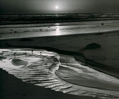Ansel Adams.  Birds on the Beach.  Great black and white contrast.  Good example of Monochromatic scale, and value range.  Loooove his Photography Skills!