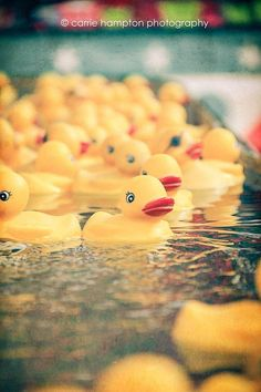 Rubber Ducks, carnival art, kids bathroom picture, vintage fair photography, floating, fun photography, water, childs room, nursery by CarrieHamptonImages on Etsy https://www.etsy.com/listing/107439200/rubber-ducks-carnival-art-kids-bathroom