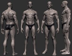 Exceptional Drawing The Human Figure Ideas. Staggering Drawing The Human Figure Ideas. Human Anatomy Art, Anatomy For Artists, Anatomy Sketches, Anatomy Drawing, Zbrush Anatomy, Human Poses Reference, Anatomy Reference, Art Reference, 3d Modellierung