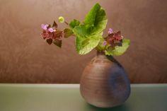 Chabana di primavera - Studio Spazio Bianco - By Jenny Favari