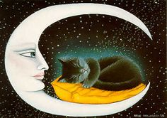 The cat and the moon.Anna Hollerer
