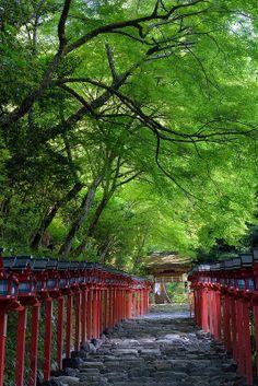 貴船神社 京都 Kifune Shrine #kyoto #japan