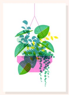 Deanna Halsall on Behance