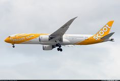 Boeing 787-9 Dreamliner aircraft picture