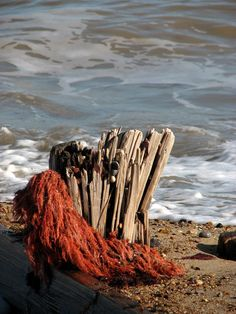 Splintered remains of a groyne by Evelyn Simak, via Geograph