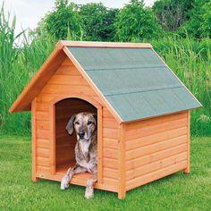 Adotou um cachorro? Então uma casinha para ele é essencial, se tem dúvidas na hora de comprar nós ajudamos! #cachorros #animais #dogs #doghouse