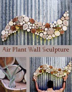 Modern Abstract Art Reclaimed wood Air plant sculpture Unique Art Tree slice Wood slice art Air plants Succulent Living wall art