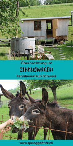 Aussergewöhnliche Übernachtung im Zirkuswagen auf einem Bauernhof in der Schweiz, Nähe Zürich Family Getaways, Fun Activities, My Dream, Family Travel, Switzerland, Travel Inspiration, Travel Destinations, Camping, Happy
