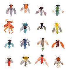 Pattern design and children illustration Preschool Bug Theme, Preschool Art Activities, Creative Activities, Cute Kids Crafts, Kid Crafts, U Craft, Insect Crafts, Finger Painting, Art Graphique