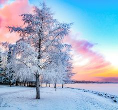 Winter in #Finland - it's always an unforgettable experience. See you soon, Winter!
