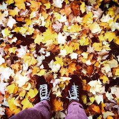 Otoño  #shades #instagram #instagramers #leaf #leaves #autumn #europe #pamplona #igerspamplona #navarra #sneakers #sneakerhead #celio #yellow #brown #color #colors #colorful #enjoy #amarillo #otoño #amazing #instadaily #instacool #park #parque