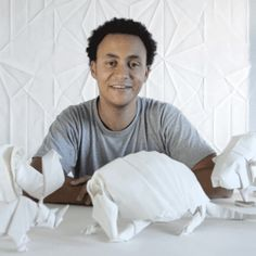 Sipho Mabona Is Looking to Create a Life-Size Origami Elephant... Using Only One Sheet of Paper
