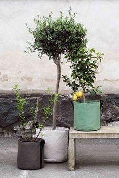 Des pots de fleurs souples et design BACSAC pour végétaliser le béton des villes !