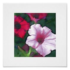 Petunias Poster - birthday gifts party celebration custom gift ideas diy
