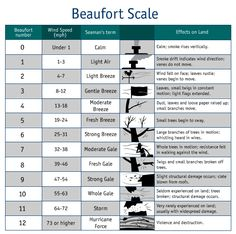 A tips page dedicated to determining wind speed using the Beaufort Scale. Weather Science, Weather Unit, Weather And Climate, Weather Activities, Science Activities, Science Experiments, Beaufort Scale, Shipping Forecast, Weather Words
