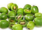 Kiwaou Kiwi arguta 'Issai' Baby Kiwi, Edibles Online, Green Fruit, Fruit Plants, Flowering Shrubs, Different Plants, Tropical Fruits, Delicious Fruit, Types Of Soil