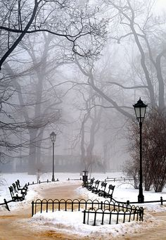 Winter morning fog - Krakow - Poland. Wouldn't it be amazing to walk through here on a cold winter morning?